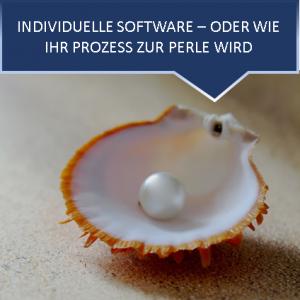 individuelle software programmieren lassen